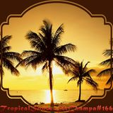 #166 ~ Tropical Sunset