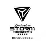 Hardwell / Storm Electronic Music Festival (China) 風暴電子音樂節 2016 (中國)