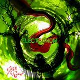 Dj Piloramos -Electronom