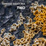 Ambient Diary Mix#01 - Two