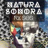 Abstract Maglioni - RX.SOS Natural Sonora Parque obrero