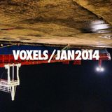 Voxels - JAN2014