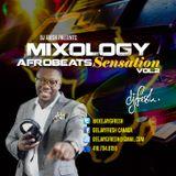 Mixology - AFROBEATS SENSATION VOL.2