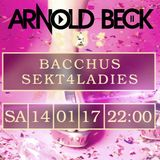Bacchus Club Wismar 14.01.2017 PART 4