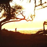 Malibu Retreat