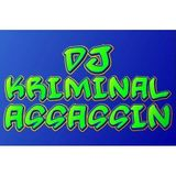 DJ KRIMINAL OLD SKOOL AND NEW SKOOL GARAGE MIX