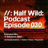 Half Wild: Podcast // Episode 030 // Sebastian Wild: Sunday Sessions