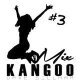 KangooMix 3