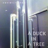 A Duck in a Tree 2013-06-08 | Some Stones Unturned