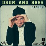 DJ SHUM - Drum'n'bass 13