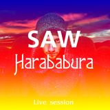 SAW - Harababura