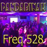 DJ PandaBinah - Live @ The Basement - Freq 528 - 2-12-17