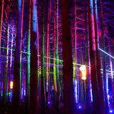 Electric Førest (Dj Frøst Club/Party Set)