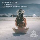 Anton Tumas - Robot Heart - Burning Man 2015