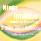 3 Mins Intuitive Blind Reading Quickies 1252016