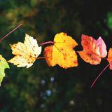 Rn-eM - Changing Colors