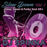 Dj Spinna presents: Slow Down Vol 1