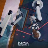 Dubmax - Raumakustik #05