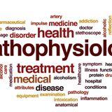 Pathophysiology L04