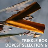 Trikkle Box - Dopest Selection 6