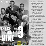 WAYNE IRIE PRESENTS THESE ARMS OF MINE MUSIC MIX