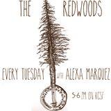 The Redwoods #5
