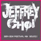 DJ Jeffrey Choi 2014 EDM Festival Sound.1