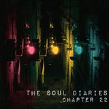 The Soul Diaries : Ch 22