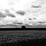 Odental 7