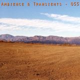 Ambience & Transients (Dub Version)