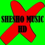 Mezcla De Media Hora / Mix Half Hour / By: SheSho Music HD N°2