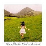 She's Like The Wind (House Remix Mix)