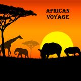 African voyage