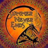 Summer Never Ends Festival 2017 - Psycharox & Harysive (Human Revolution)