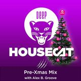 Deep House Cat Show - Pre-Xmas Mix - with Alex B. Groove