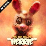 Boy Bruynzeel - You can call me Herrie