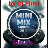 Electro Mini Mix 2014 by Dj Flusi