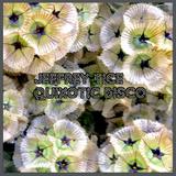 Jeffrey Tice - Quixotic Disco