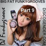 DJ Roy Funkygroove Big Fat Funkygrooves part 9