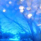 winter blues