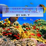 Deep House Sensation Mix Vol.1