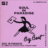 Soul in Paradise w/ Jamma Dee and Straight Honey - 23rd August 2018