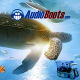 The AudioBoots Top Ten Count Down Oct Nov 2016