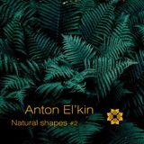 Mudra podcast / Anton El'Kin - Natural Shapes #2 [MM70]
