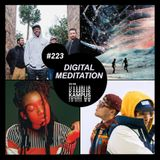 Digital Meditation # 223 [Young Britain]