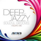 Deep & Jazzy Soulful Grooves vol 01 by Dj Jainaro