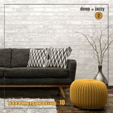 jazzy n deep house 2 - the Jazz Perspective 10