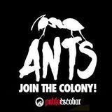 Ants Party - Pablo Escobar #0406
