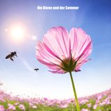 Die Biene und der Sommer / The Bee and the Summer