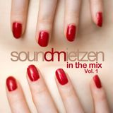 In The Mix Vol. 1 (September 2014)